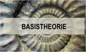 Button Basistheorie